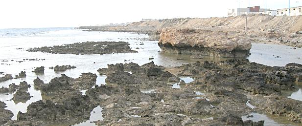 الشاطئ الصخري في منطقة الوجه