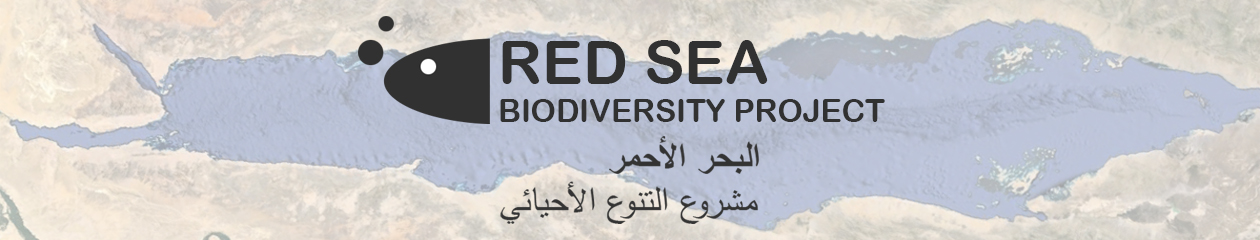 Red Sea Biodiversity Project